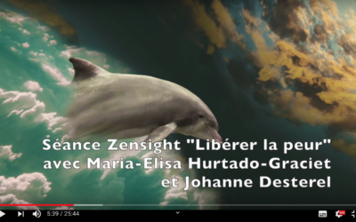 """""""Libérer la peur"""" avec le Zensight par Johanne Desterel"""